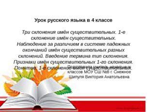 Урок русского языка в 4 классе Три склонения имён существительных. 1-е склон