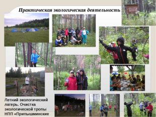 Летний экологический лагерь. Очистка экологической тропы НПП «Припышминские б