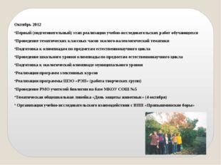 Октябрь 2012 Первый (подготовительный) этап реализации учебно-исследовательск