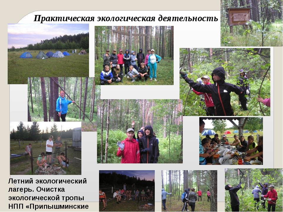 Летний экологический лагерь. Очистка экологической тропы НПП «Припышминские б...
