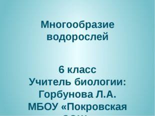 Многообразие водорослей 6 класс Учитель биологии: Горбунова Л.А. МБОУ «Покров