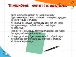 Тәжірибенің негізгі қағидалары: орта мектепте негізгі пәндерді оқыту әдістеме