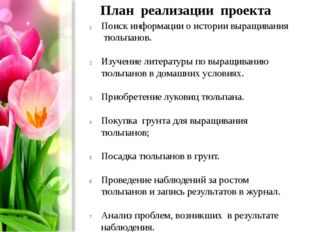 План реализации проекта Поиск информации о истории выращивания тюльпанов. Изу
