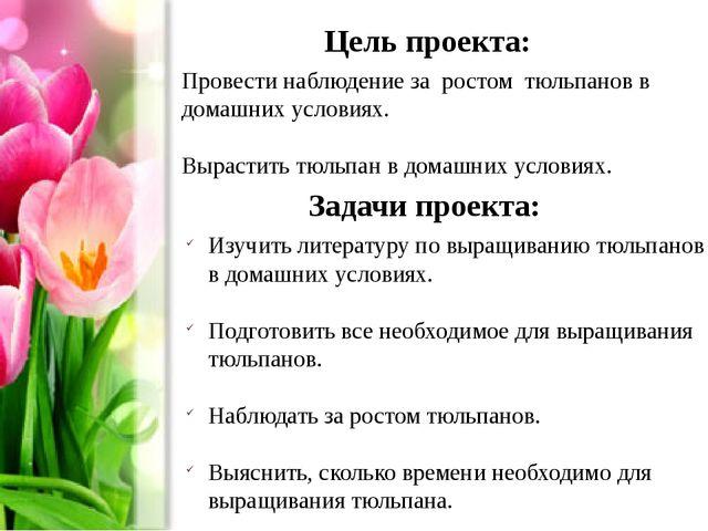 Цель проекта: Провести наблюдение за ростом тюльпанов в домашних условиях. Вы...