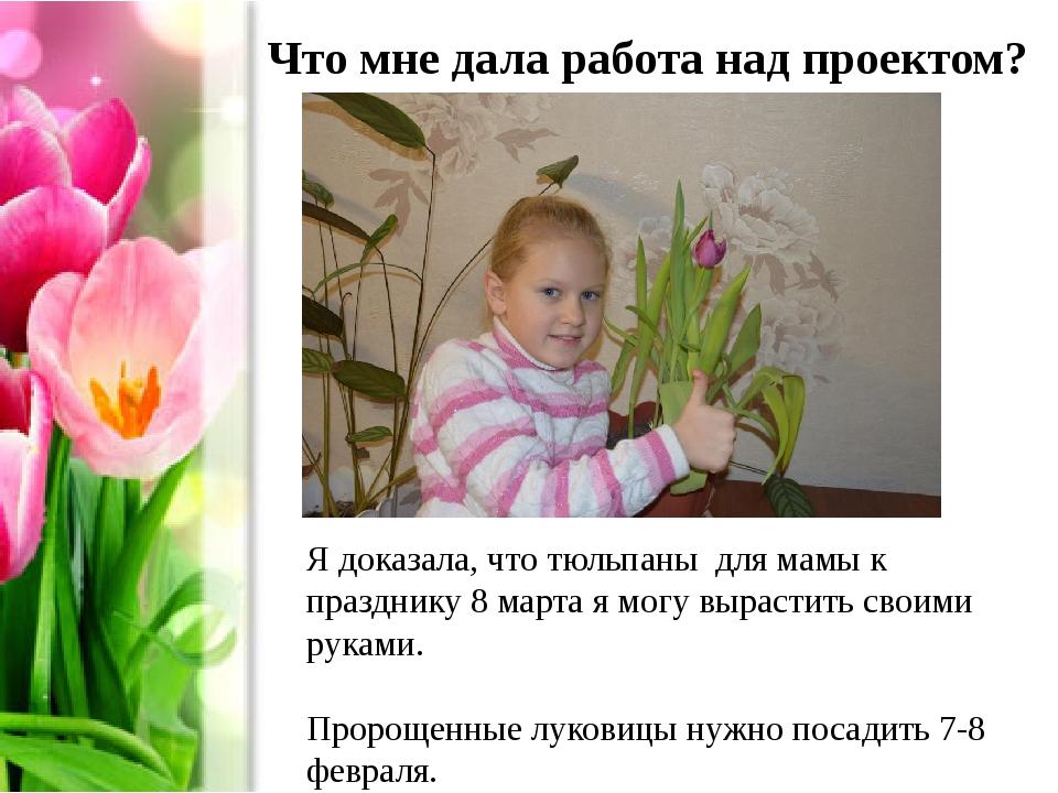 Что мне дала работа над проектом? Я доказала, что тюльпаны для мамы к праздни...