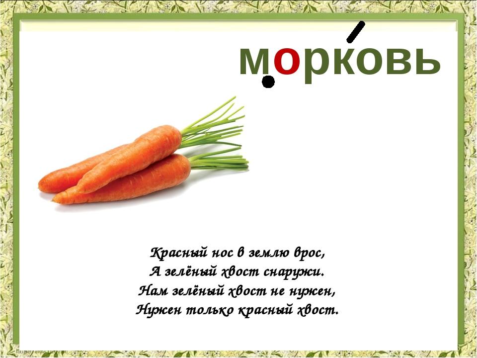 Поздравление про морковь