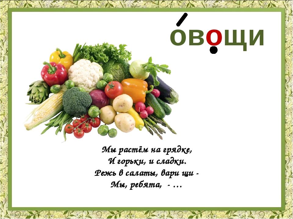 овощи Мы растём на грядке, И горьки, и сладки. Режь в салаты, вари щи - Мы, р...