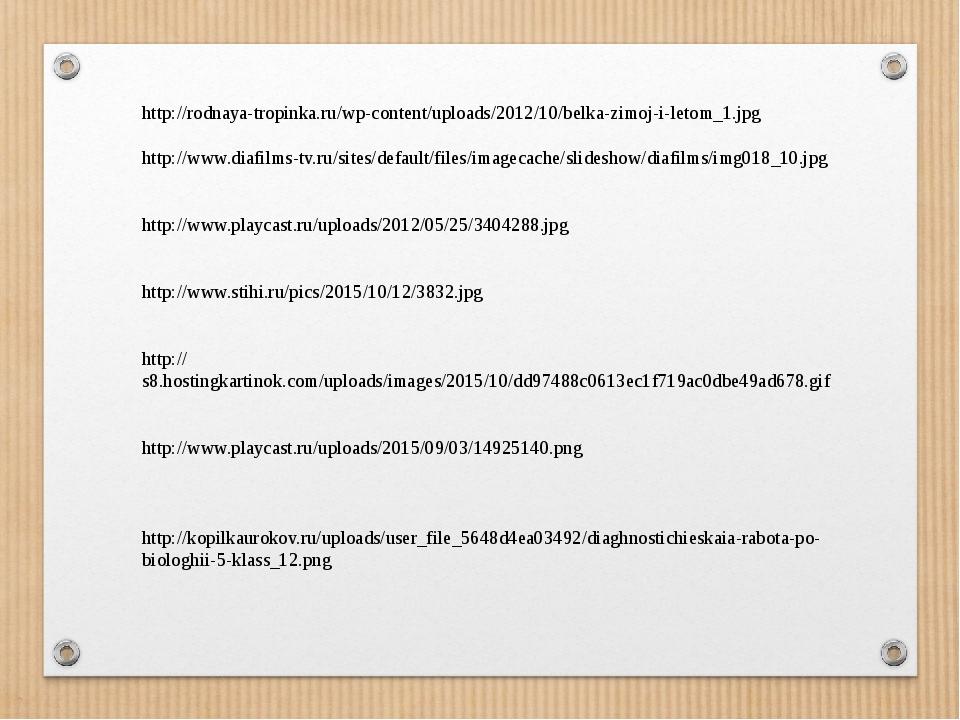 http://rodnaya-tropinka.ru/wp-content/uploads/2012/10/belka-zimoj-i-letom_1.j...