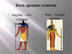 Боги древних египтян Анубис – бог «страны мертвых» Маат – богиня правды