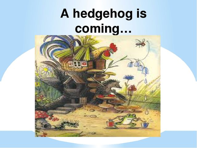 A hedgehog is coming…