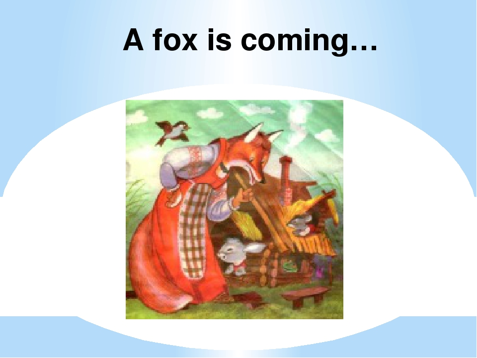 A fox is coming…