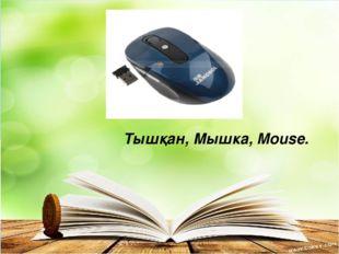 Тышқан, Мышка, Mouse.