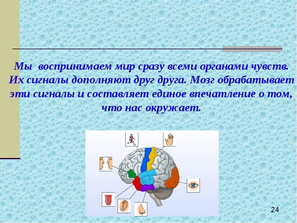 Мы воспринимаем мир сразу всеми органами чувств. Их сигналы дополняют друг др...