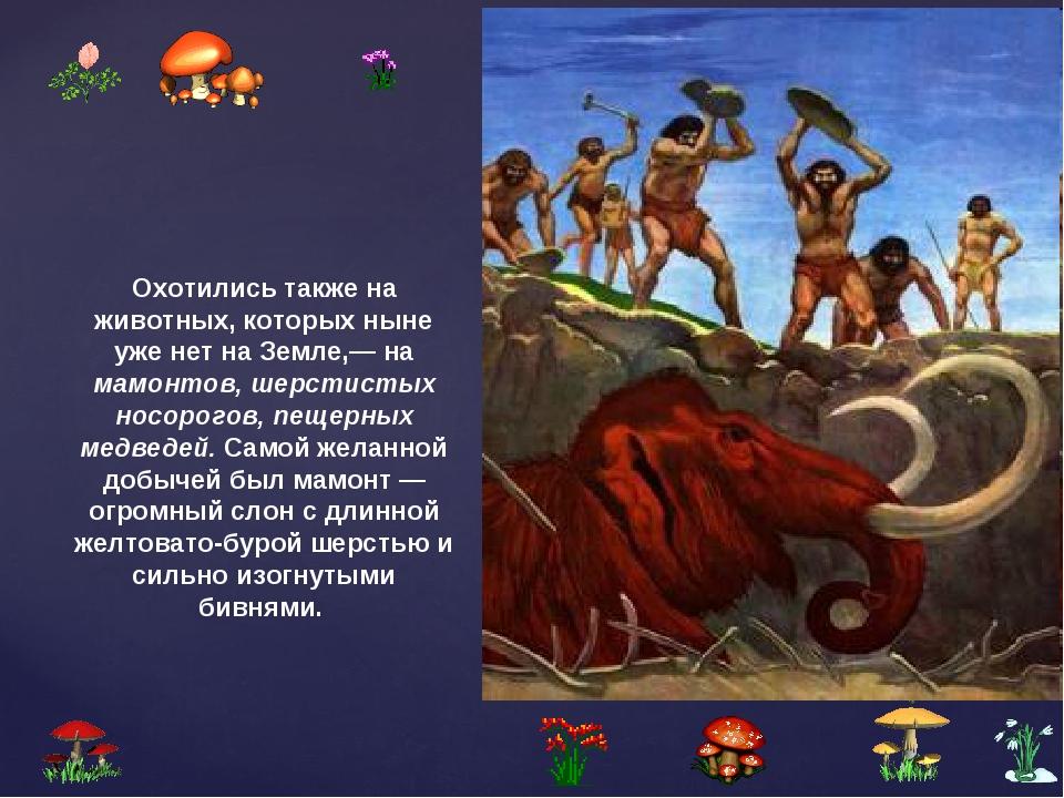 Охотились также на животных, которых ныне уже нет на Земле,— на мамонтов, шер...