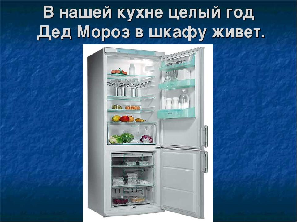 В нашей кухне целый год Дед Мороз в шкафу живет.