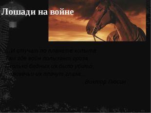 Лошади на войне …И стучат по планете копыта Там где войн полыхает гроза. Скол
