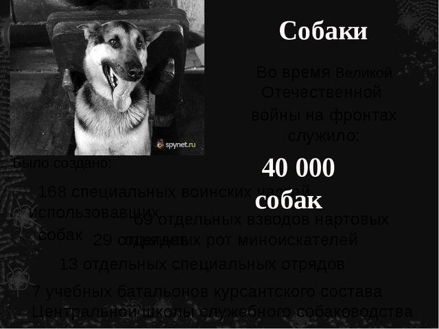 Собаки Во время Великой Отечественной войны на фронтах служило: Было создано:...