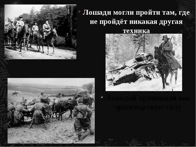 Лошади могли пройти там, где не пройдёт никакая другая техника Лошадей примен...