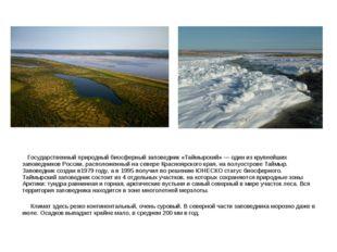 Государственный природный биосферный заповедник «Таймырский» — один из крупн