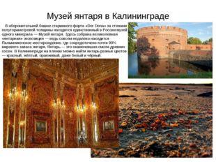 Музей янтаря в Калининграде В оборонительной башне старинного форта «Der Dona