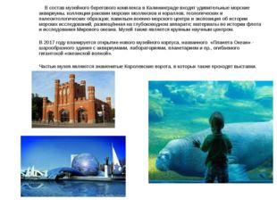 В состав музейного берегового комплекса в Калининграде входят удивительные м