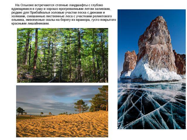 На Ольхоне встречаются степные ландшафты с глубоко вдающимися в сушу и хорош...