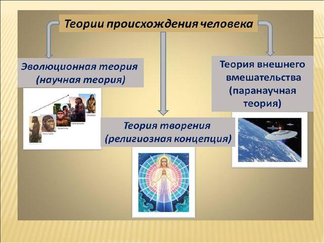 Эволюционная теория происхождения человека презентация — pic 3