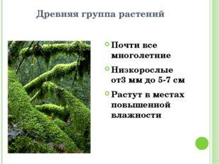 Древняя группа растений Почти все многолетние Низкорослые от3 мм до 5-7 см Ра