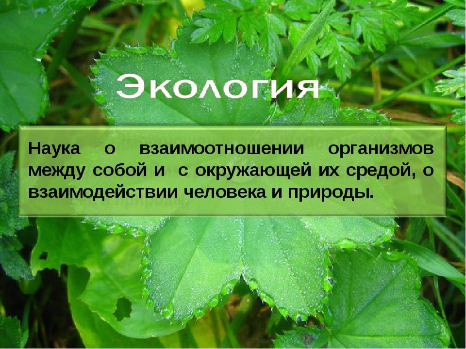 Наука о взаимоотношении организмов между собой и с окружающей их средой, о вз...