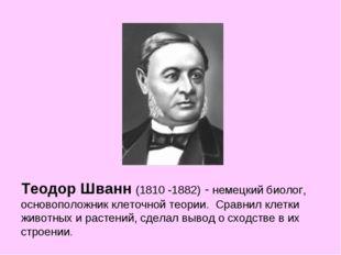 Теодор Шванн (1810 -1882)- немецкий биолог, основоположник клеточной теории.