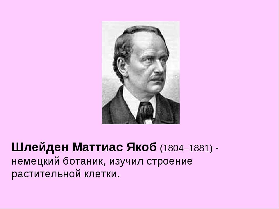 Шлейден Маттиас Якоб (1804–1881) - немецкий ботаник, изучил строение растител...