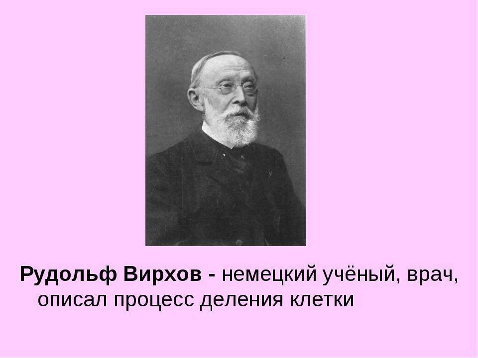 Рудольф Вирхов - немецкий учёный, врач, описал процесс деления клетки