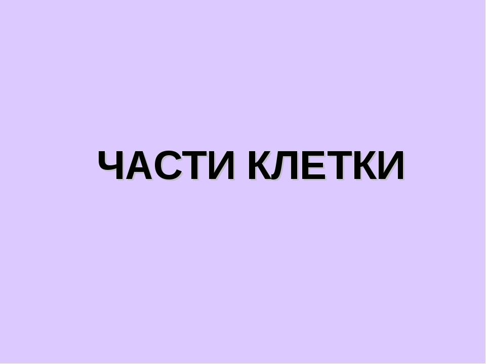 ЧАСТИ КЛЕТКИ