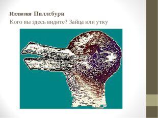 Иллюзия Пиллсбури Кого вы здесь видите? Зайца или утку