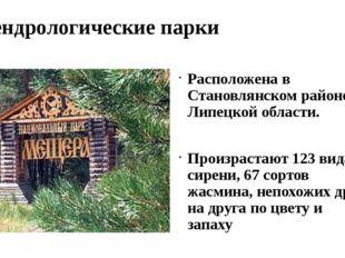 Дендрологические парки Расположена в Становлянском районе Липецкой области. П