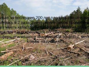 Только за последние 200 лет площадь лесов в мире сократилась в 2 раза. Уничто