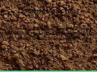 Почвенные ресурсы Почвенные ресурсы - это почвенный покров определенной терри
