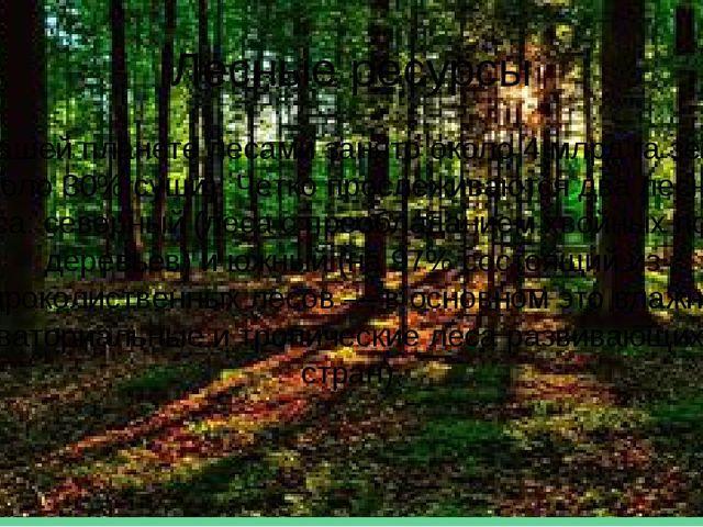 Лесные ресурсы На нашей планете лесами занято около 4 млрд га земель (около 3...