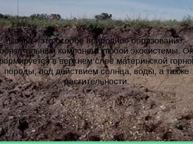 Почва - это особое природное образование, обязательный компонент любой экосис...