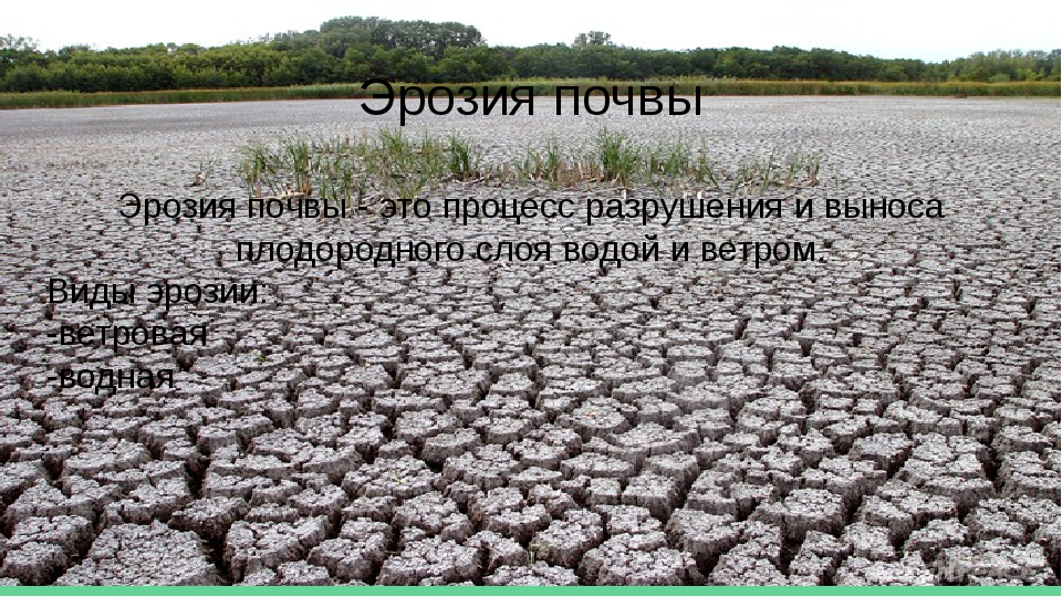 Эрозия почвы Эрозия почвы - это процесс разрушения и выноса плодородного слоя...