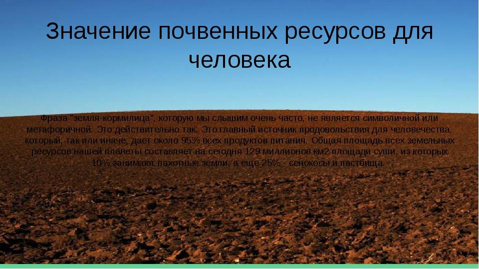 """Значение почвенных ресурсов для человека Фраза """"земля-кормилица"""", которую мы..."""