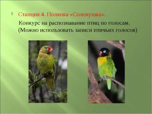 Станция 4. Полянка «Соловушка». Конкурс на распознавание птиц по голосам. (Мо