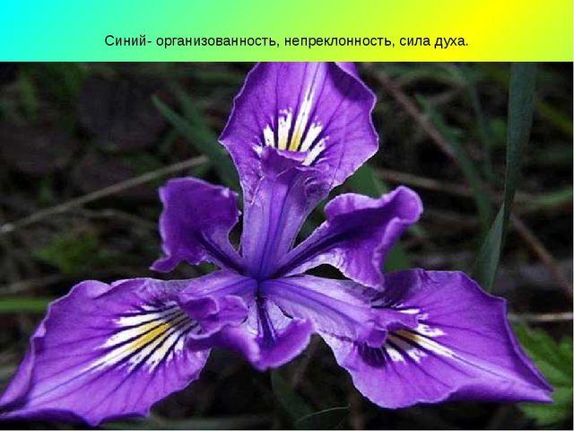 Синий- организованность, непреклонность, сила духа.