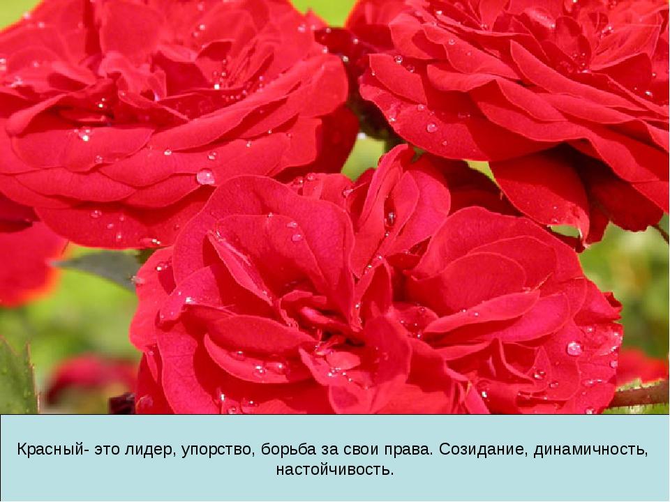 Красный- это лидер, упорство, борьба за свои права. Созидание, динамичность,...