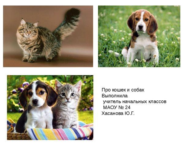 Про кошек и собак Выполнила учитель начальных классов МАОУ № 24 Хасанова Ю.Г.