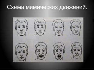 Схема мимических движений.