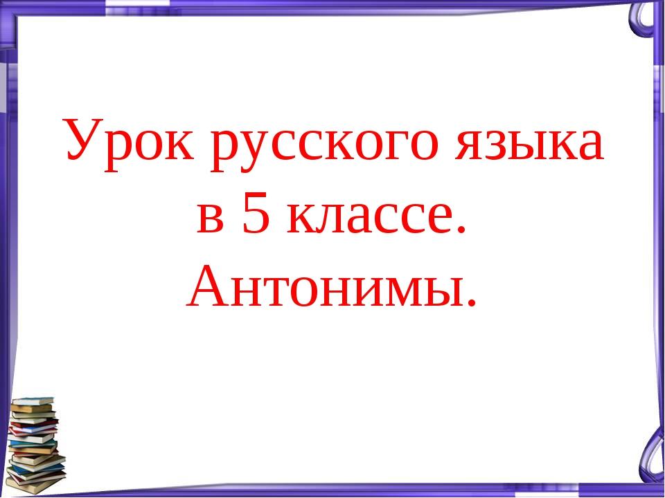 Урок русского языка в 5 классе. Антонимы.