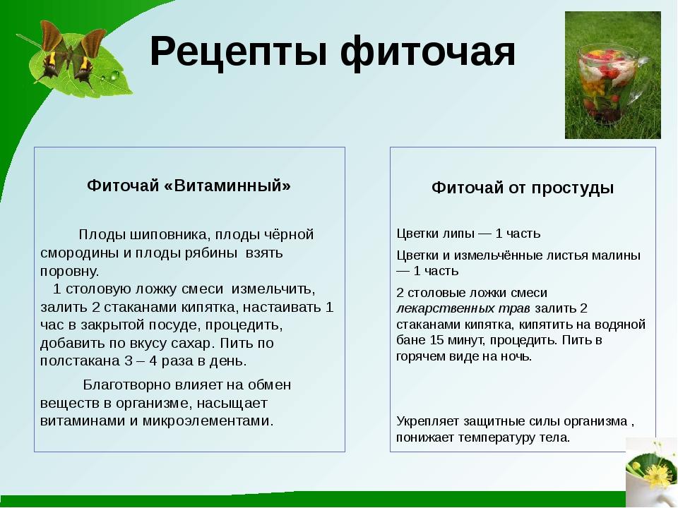 Рецепты фиточая Фиточай «Витаминный» Плоды шиповника, плоды чёрной смородины...