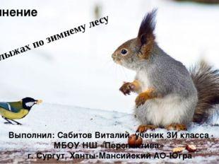На лыжах по зимнему лесу Выполнил: Сабитов Виталий, ученик 3И класса МБОУ НШ