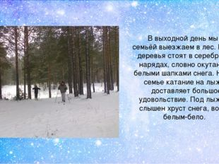 В выходной день мы всей семьёй выезжаем в лес. В лесу деревья стоят в серебря